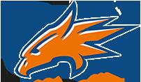 Logo von Rostock Griffins